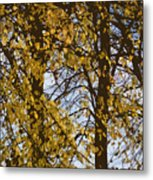 Golden Tree 2 Metal Print