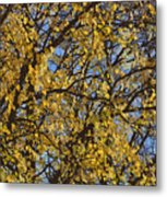 Golden Tree 3 Metal Print