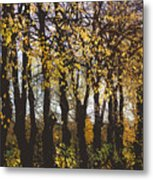 Golden Trees 1 Metal Print
