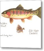 Golden Trout And Elk Hair Caddis Fly Metal Print