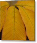 Golden Umbrella Metal Print