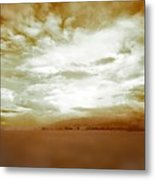 Golden Whites Metal Print