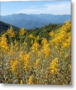 Goldenrod Mountain View Metal Print