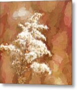 Goldenrod Plant In Fall Metal Print