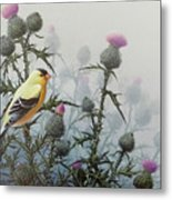 Goldfinch And Thistles Metal Print