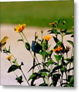 Goldfinch And Yellow Flowers Metal Print