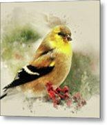 Goldfinch Watercolor Art Metal Print