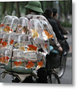 Goldfish In A Bag Vietnam On Bicycle Unique  Metal Print