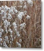Golds And Whites Metal Print