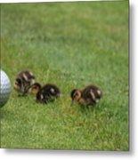 Golf Anyone Metal Print