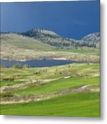 Golfing And Grazing Metal Print