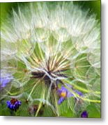 Gone To Seed Metal Print