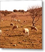 Gone With The Herd Metal Print