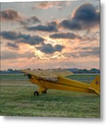 Good Morning Cub Metal Print