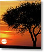 Good Night, Maasai Mara Metal Print