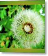 Good Wishes Metal Print