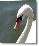 Goose On The Lake Metal Print