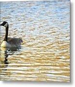 Goose On The Pond Metal Print