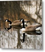 Goose Reflection Metal Print