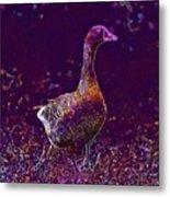 Goose Village Household Farm  Metal Print