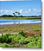Gordons Pond At Cape Henlopen State Park - Delaware Metal Print