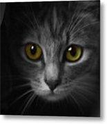 Gorgeous Yellow-green Eyes Cat Metal Print