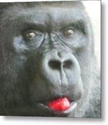 Gorilla Loves Jello Metal Print
