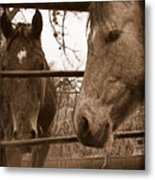 Gossip At The Fence Metal Print