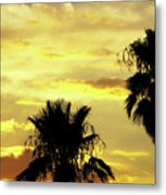 Got To Love Monsoons Metal Print