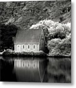 Gougan Barra Metal Print by Thomas Maya