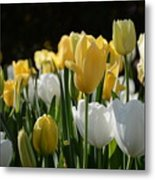 Grace And Gladness Metal Print
