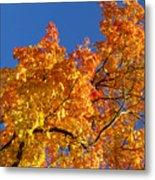 Gradient Autumn Tree Metal Print
