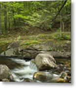 Grafton Notch Maine Metal Print