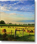 Grain In The Field Metal Print
