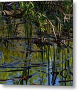 Grand Beach Marsh Metal Print