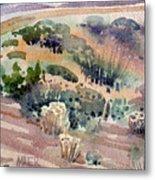 Grand Canyon Flora Study 77 Metal Print