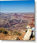 Grand Canyon Girl And Dog Metal Print