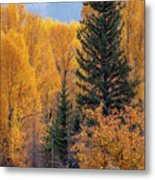 Grand Teton Fall Metal Print