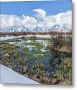 Grand Tetons From Willow Flats In Early April Metal Print