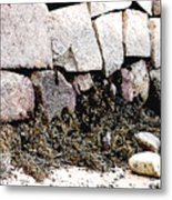 Granite And Seaweed Metal Print
