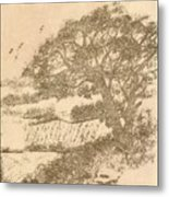 Grape Arbor On Brown Metal Print