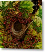 Grape Nest Metal Print