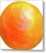 Grapefruit  Metal Print