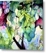 Grapes II Metal Print