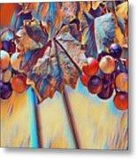 Grapevine Art Metal Print