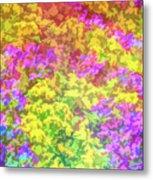 Graphic Rainbow Colorful Garden Metal Print