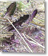 Grass #3 Metal Print