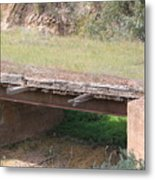 Grass Bridge Metal Print