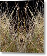 Grass Chief Metal Print