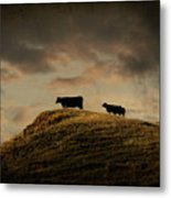 Grass Is Greener On The Other Side Metal Print